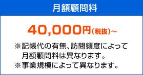 月額顧問料 50,000円(税抜)〜